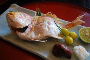 sea bream   鯛