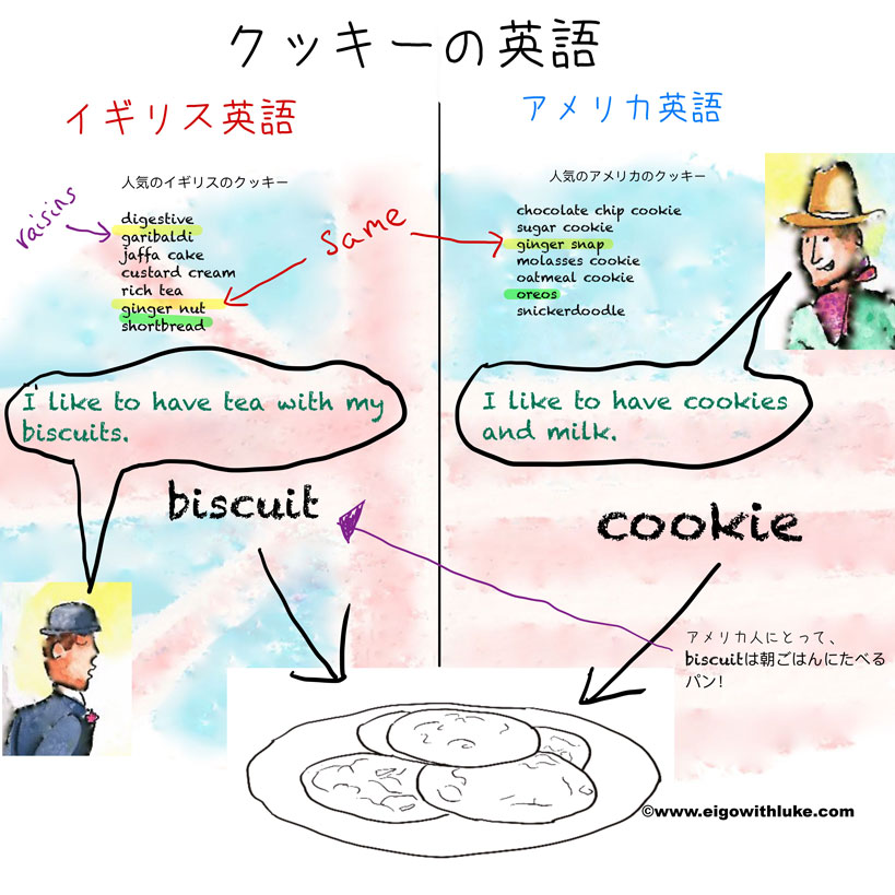 biscuit と cookieの意味