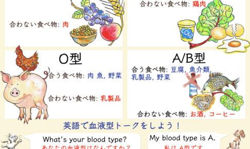 血液型と英語
