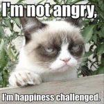 Grump CatのMeme