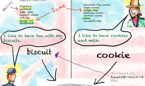 biscuits and cookiesの違い